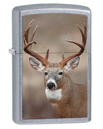 Deer Zippo Lighter in Street Chrome 29081